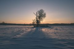 por do sol colorido do inverno com os raios claros que vêm com o grande Fotografia de Stock Royalty Free