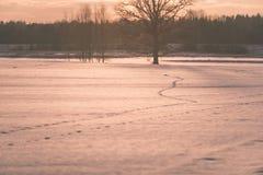 por do sol colorido do inverno com os raios claros que vêm com o grande Imagem de Stock Royalty Free