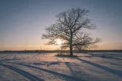 por do sol colorido do inverno com os raios claros que vêm com o grande Foto de Stock Royalty Free