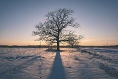 por do sol colorido do inverno com os raios claros que vêm com o grande Fotos de Stock Royalty Free