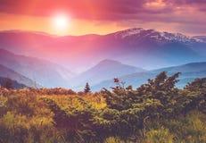 Por do sol colorido nas montanhas Fotos de Stock Royalty Free