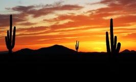 Por do sol colorido no deserto do sudoeste do Arizona Fotos de Stock