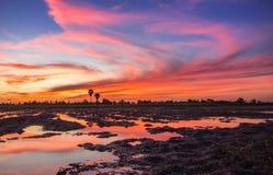 Por do sol colorido sobre o fundo crepuscular da nuvem e do céu, colo Imagens de Stock Royalty Free