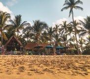 Por do sol com as palmeiras na praia de Sayulita fotografia de stock