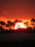 Por do sol com céu alaranjado Foto de Stock Royalty Free