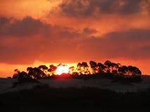 Por do sol com céu alaranjado Fotos de Stock Royalty Free