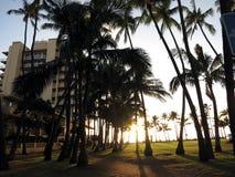 Por do sol como abaixa para o oceano que brilha com a fileira de Coc Imagem de Stock