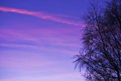 Por do sol cor-de-rosa imagem de stock