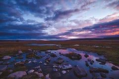 Por do sol cor-de-rosa colorido com reflexão sobre pantanais imagens de stock