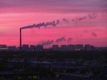 Por do sol cor-de-rosa e frio Imagens de Stock
