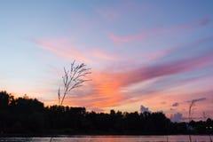 Por do sol cor-de-rosa no rio com uma vista da aleia Imagens de Stock