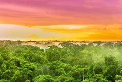 Por do sol cor-de-rosa sobre a floresta tropical das Amazonas em Brasil Fotografia de Stock