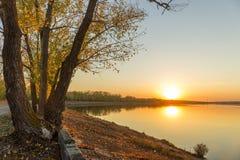 Por do sol da árvore do rio do outono imagens de stock