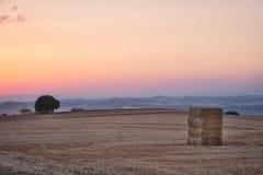 Por do sol da American National Standard do campo de Toscana Foto de Stock