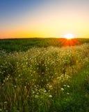 Por do sol da exploração agrícola de Ontário Fotografia de Stock