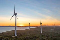 Por do sol da exploração agrícola de vento de Albany Imagem de Stock