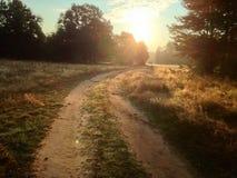 por do sol da manhã Foto de Stock Royalty Free