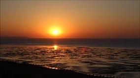 Por do sol da maré baixa do lapso de tempo video estoque