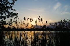 Por do sol 6 da mola Foto de Stock Royalty Free