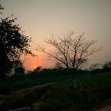 Por do sol da noite Fotografia de Stock Royalty Free