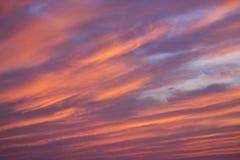 Por do sol da noite do verão com nuvens coloridas Foto de Stock