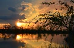 Por do sol da noite no lago imagens de stock royalty free