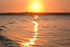 Por do sol 5 da onda Imagem de Stock Royalty Free