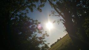 Por do sol da paisagem foto de stock