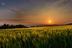 Por do sol da paisagem sobre o campo Fotografia de Stock