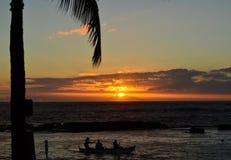 Por do sol da palmeira Imagem de Stock