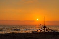 Por do sol da praia com árvores Braches Imagens de Stock