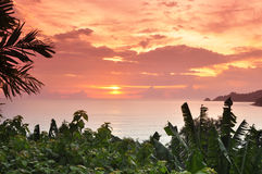 Por do sol da praia de Patong Fotos de Stock