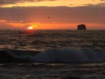 Por do sol da praia de Rialto, WA, EUA Fotografia de Stock Royalty Free