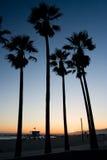 Por do sol da praia de Veneza Foto de Stock Royalty Free
