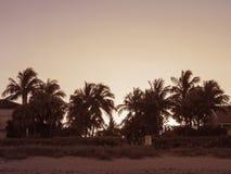 Por do sol da praia na ilha do Palm Beach imagens de stock royalty free