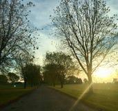 Por do sol da queda foto de stock royalty free