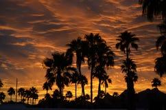 Por do sol da queda do sudoeste imagens de stock royalty free