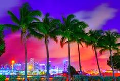 Por do sol da skyline de Miami com palmeiras Florida Imagem de Stock