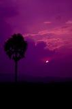 Por do sol da vista Fotografia de Stock Royalty Free
