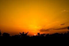 Por do sol de Canford Imagens de Stock