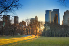 Por do sol de Central Park, New York City Imagem de Stock