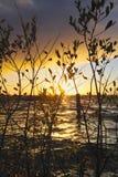 Por do sol de Ennel do Lough Foto de Stock