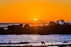 Por do sol de Essaouira, Marocco fotos de stock royalty free