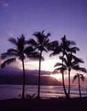 Por do sol de Havaí Imagens de Stock