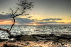 Por do sol de HDR no louro de Anaehoomalu, Havaí imagem de stock