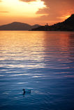 Por do sol de Iseo do lago Fotos de Stock
