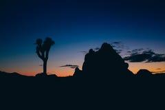 Por do sol de Joshua Tree National Park After Imagem de Stock Royalty Free
