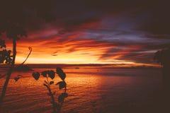 Por do sol de Malapascua Fotografia de Stock