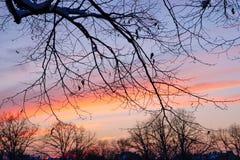 Por do sol de novembro na cidade Fotos de Stock Royalty Free