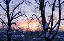 Por do sol de novembro na cidade Fotografia de Stock